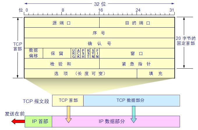 TCP header - Programmer Sought